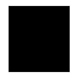 logo biceps